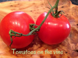 Tomatoes-on-vine.jpg