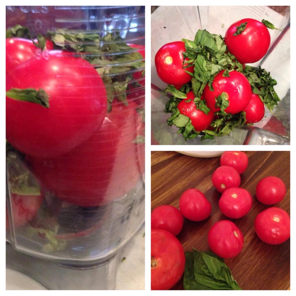Tomato-Vitamix.jpg