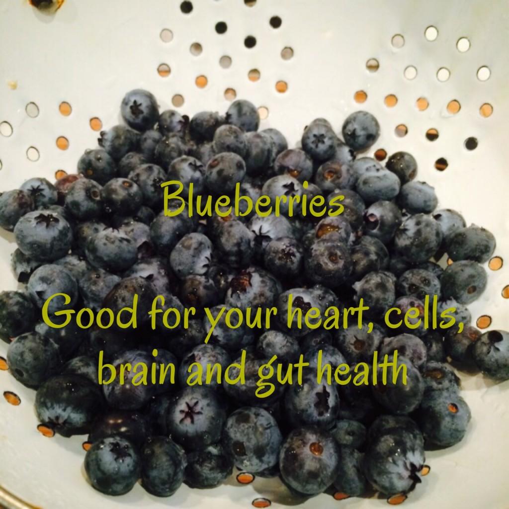 Bluberry-goodness.jpg