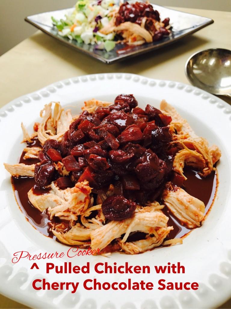 Pulled chicken 3